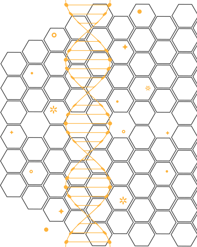DNA-Check.png