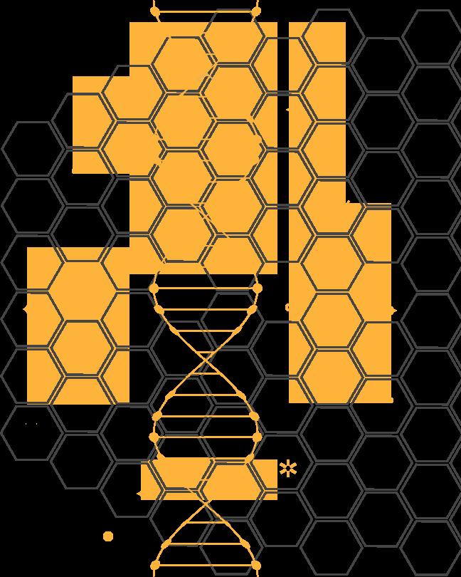 DNA-Check.png